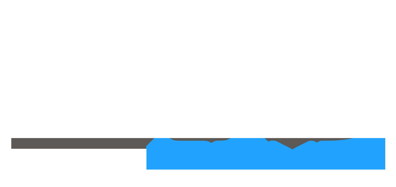iMRS prime logo flat